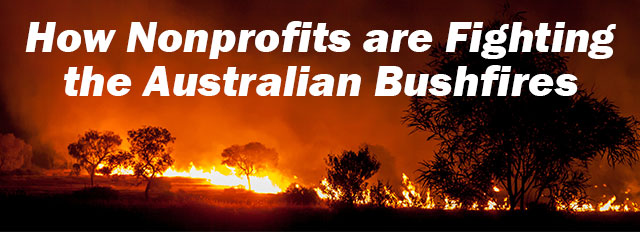 How Nonprofits are Fighting the Australian Bushfires
